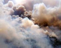Greenpeace: в Амурской области пытаются скрыть крупный лесной пожар