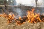Ситуация с пожарами в Приамурье по-прежнему остается крайне сложной и напряженной