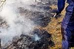 В Амурской области лесные пожары тушат с воздуха