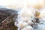 Количество пожаров в лесах в Амурской области увеличилось в три раза