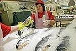 В Приморье оформляют земельные участки под строительство новых рыбных рынков