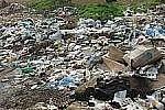 Несколько районов Приморского края утопают в мусоре